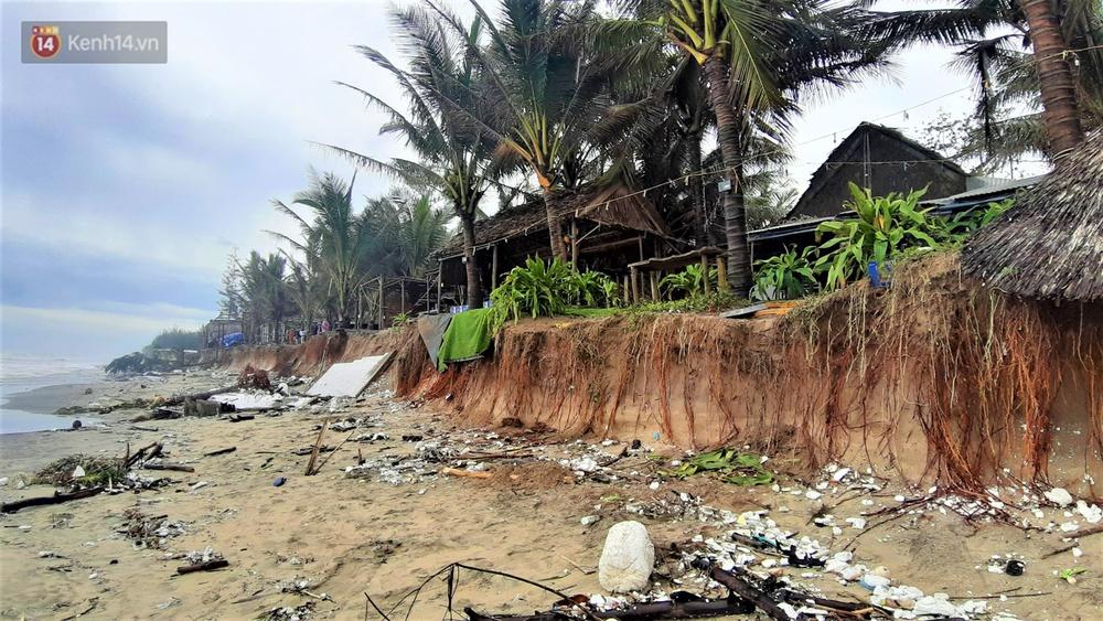 Người dân Hội An thẫn thờ nhìn bờ biển Cửa Đại, An Bàng tan hoang, hàng loạt căn nhà bị sóng biển nuốt chửng - Ảnh 12.