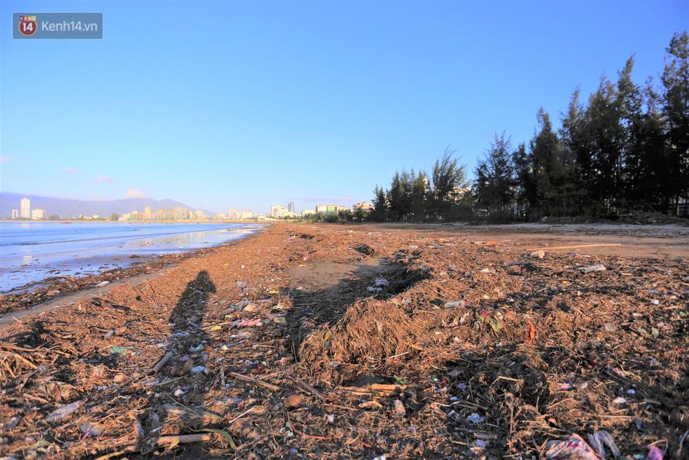 Chùm ảnh: 3.000 tấn rác dạt vào bãi biển Đà Nẵng sau bão số 13 - Ảnh 1.