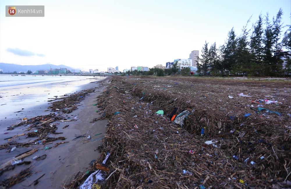 Chùm ảnh: 3.000 tấn rác dạt vào bãi biển Đà Nẵng sau bão số 13 - Ảnh 9.