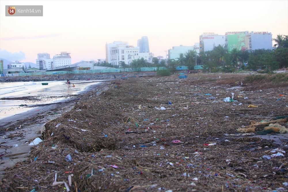 Chùm ảnh: 3.000 tấn rác dạt vào bãi biển Đà Nẵng sau bão số 13 - Ảnh 6.
