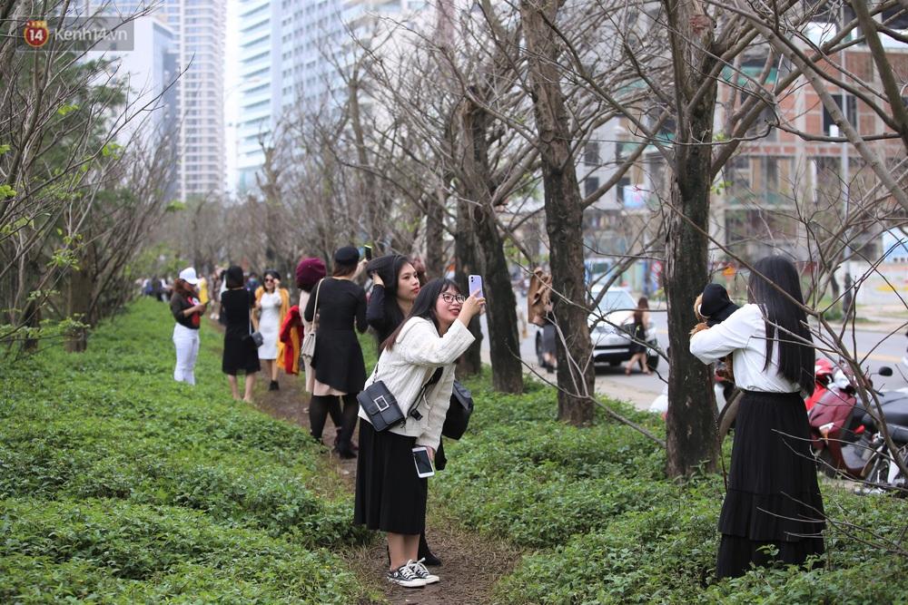 Người dân đổ xô đến check-in con đường mùa đông đẹp như trong phim Hàn ở Đà Nẵng - Ảnh 3.