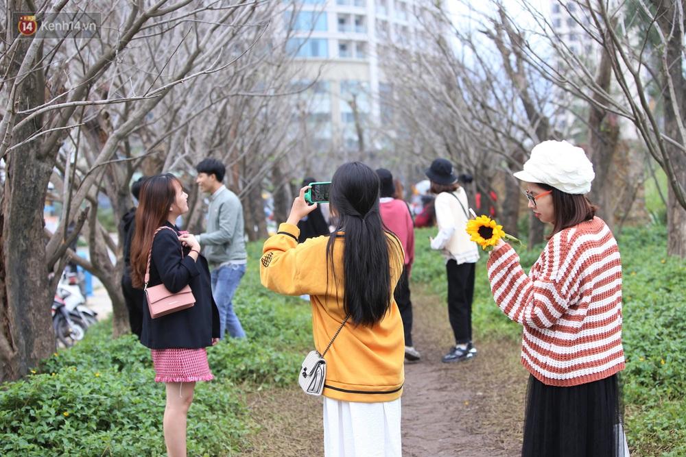 Người dân đổ xô đến check-in con đường mùa đông đẹp như trong phim Hàn ở Đà Nẵng - Ảnh 12.