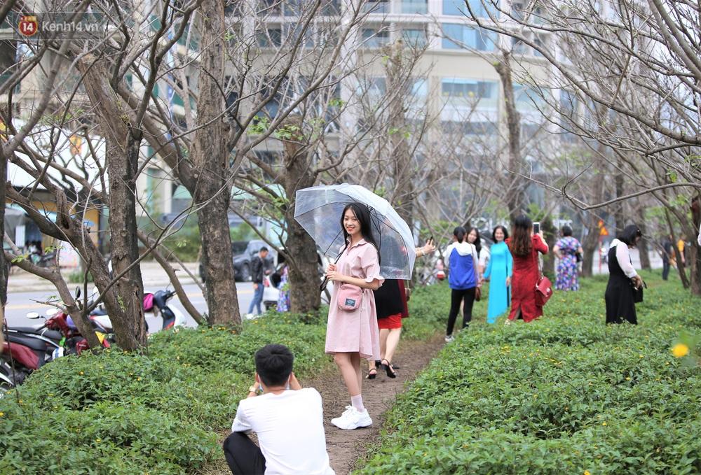Người dân đổ xô đến check-in con đường mùa đông đẹp như trong phim Hàn ở Đà Nẵng - Ảnh 4.