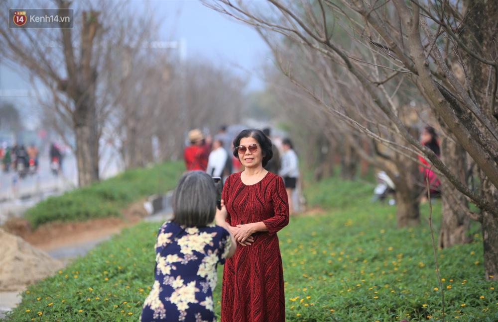 Người dân đổ xô đến check-in con đường mùa đông đẹp như trong phim Hàn ở Đà Nẵng - Ảnh 9.