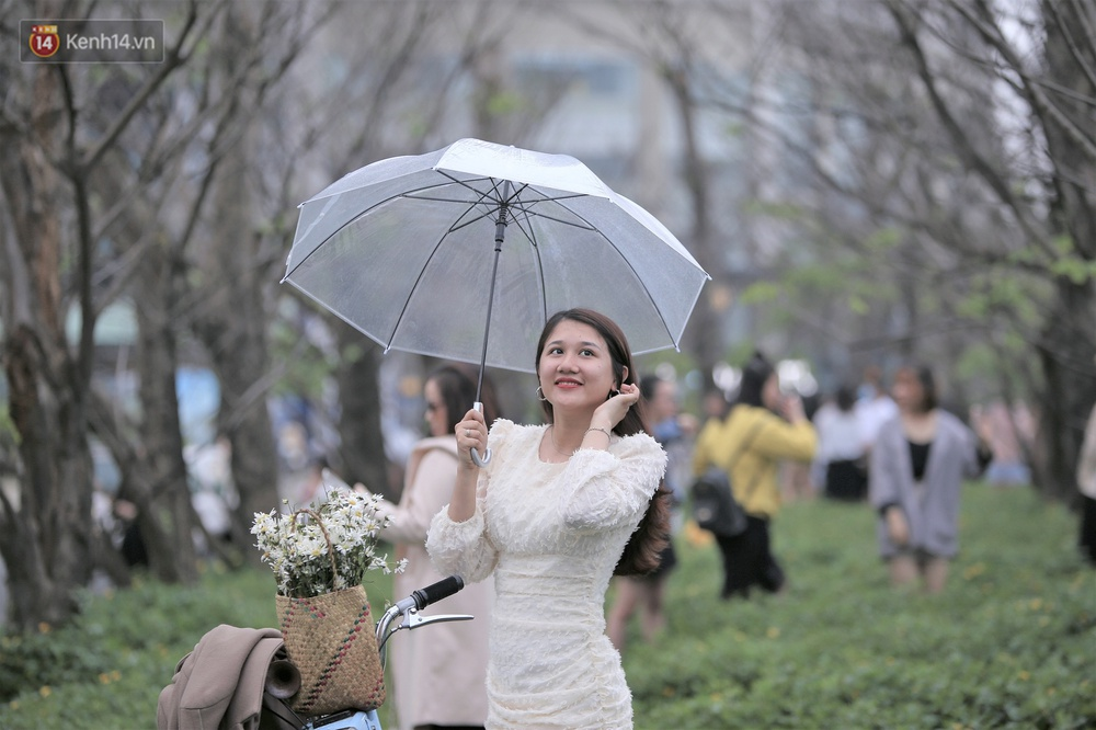 Người dân đổ xô đến check-in con đường mùa đông đẹp như trong phim Hàn ở Đà Nẵng - Ảnh 5.