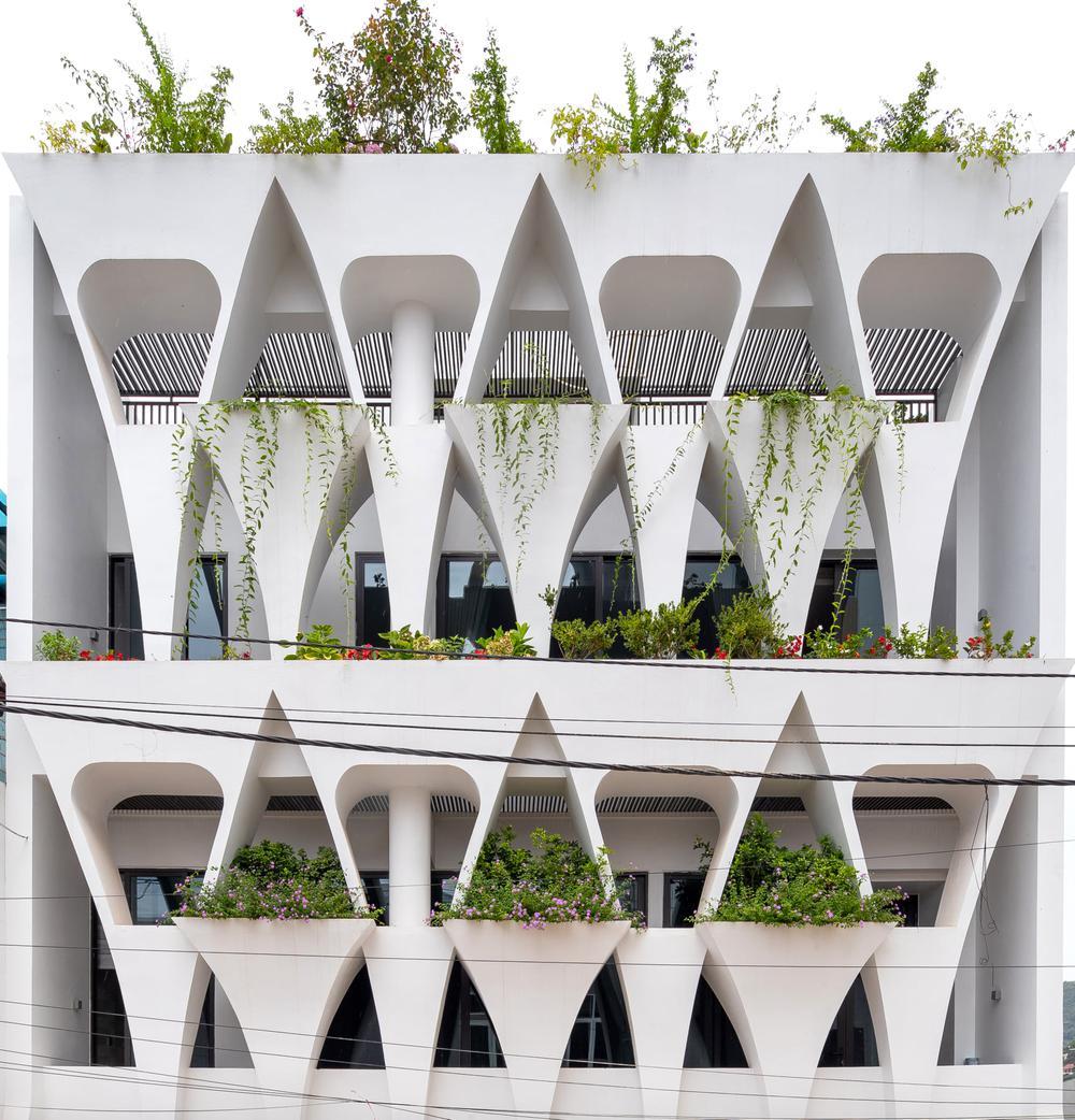 Gia đình yêu thiên nhiên xây nhà 6 tỷ, gộp hai lô đất, thiết kế mặt tiền trồng cây chất khỏi bàn - Ảnh 2.