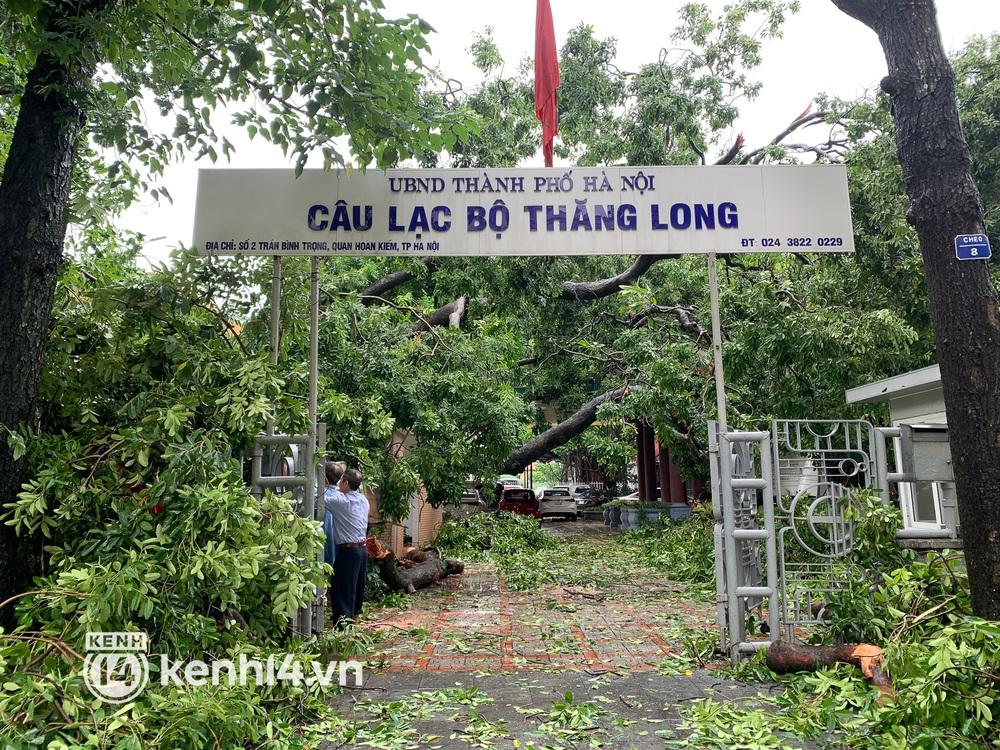 Hà Nội: Bão số 7 gây mưa lớn cả ngày, nhiều cây xanh bật gốc, đè bẹp xế hộp Camry - Ảnh 1.
