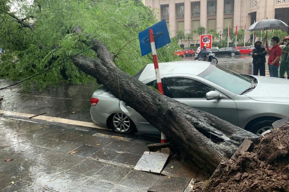Hà Nội: Bão số 7 gây mưa lớn cả ngày, nhiều cây xanh bật gốc, đè bẹp xế hộp Camry - Ảnh 9.