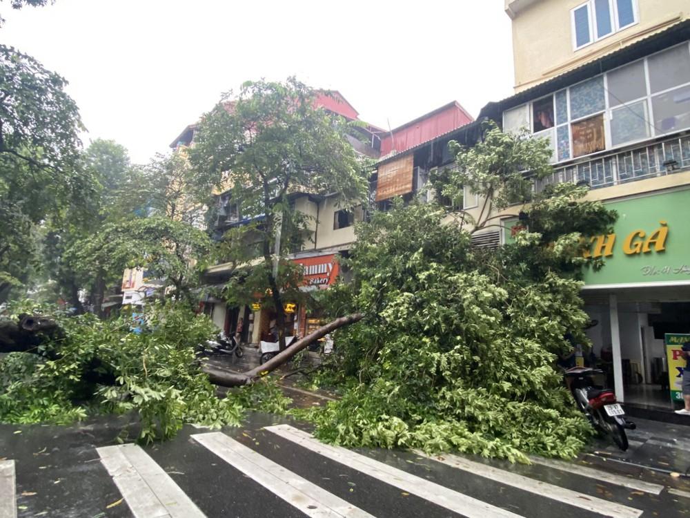 Hà Nội: Bão số 7 gây mưa lớn cả ngày, nhiều cây xanh bật gốc, đè bẹp xế hộp Camry - Ảnh 10.