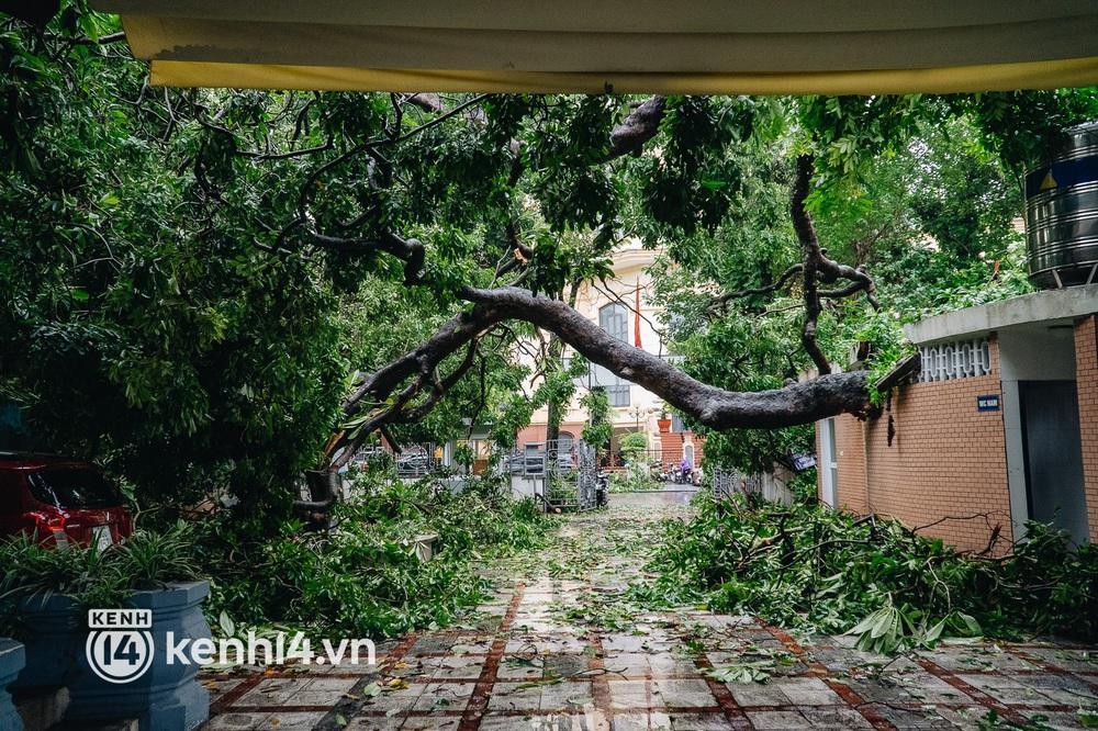 Hà Nội: Bão số 7 gây mưa lớn cả ngày, nhiều cây xanh bật gốc, đè bẹp xế hộp Camry - Ảnh 2.