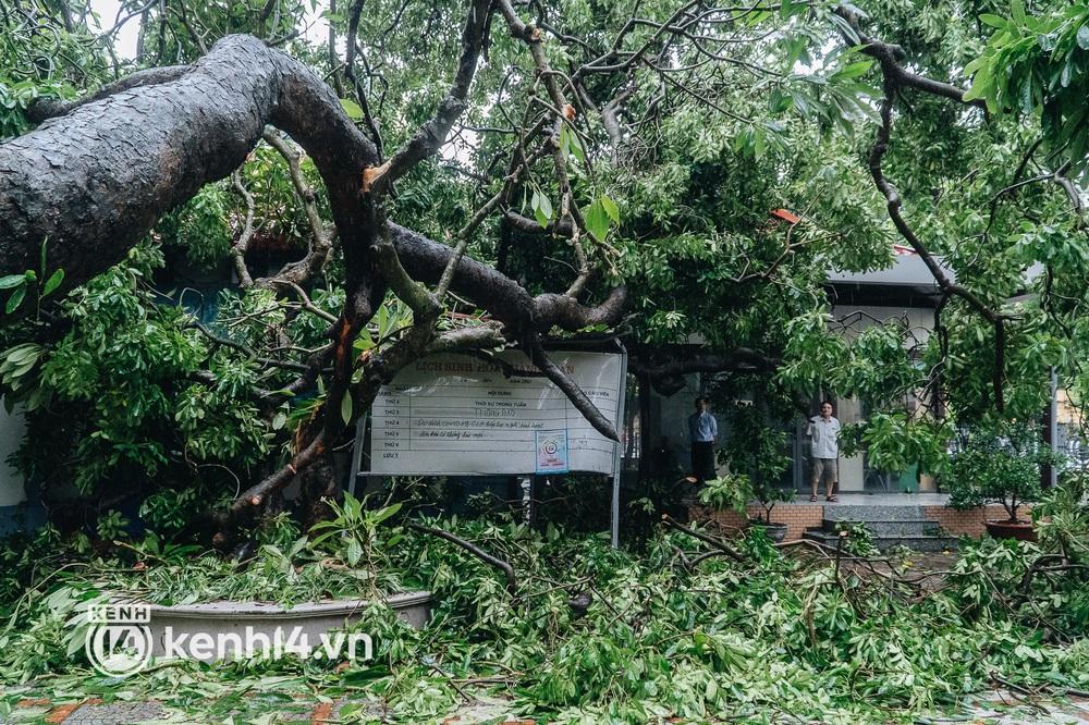 Hà Nội: Bão số 7 gây mưa lớn cả ngày, nhiều cây xanh bật gốc, đè bẹp xế hộp Camry - Ảnh 6.