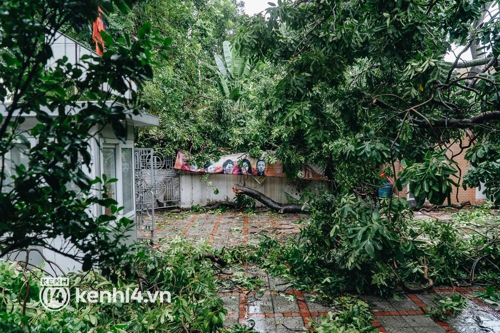 Hà Nội: Bão số 7 gây mưa lớn cả ngày, nhiều cây xanh bật gốc, đè bẹp xế hộp Camry - Ảnh 7.