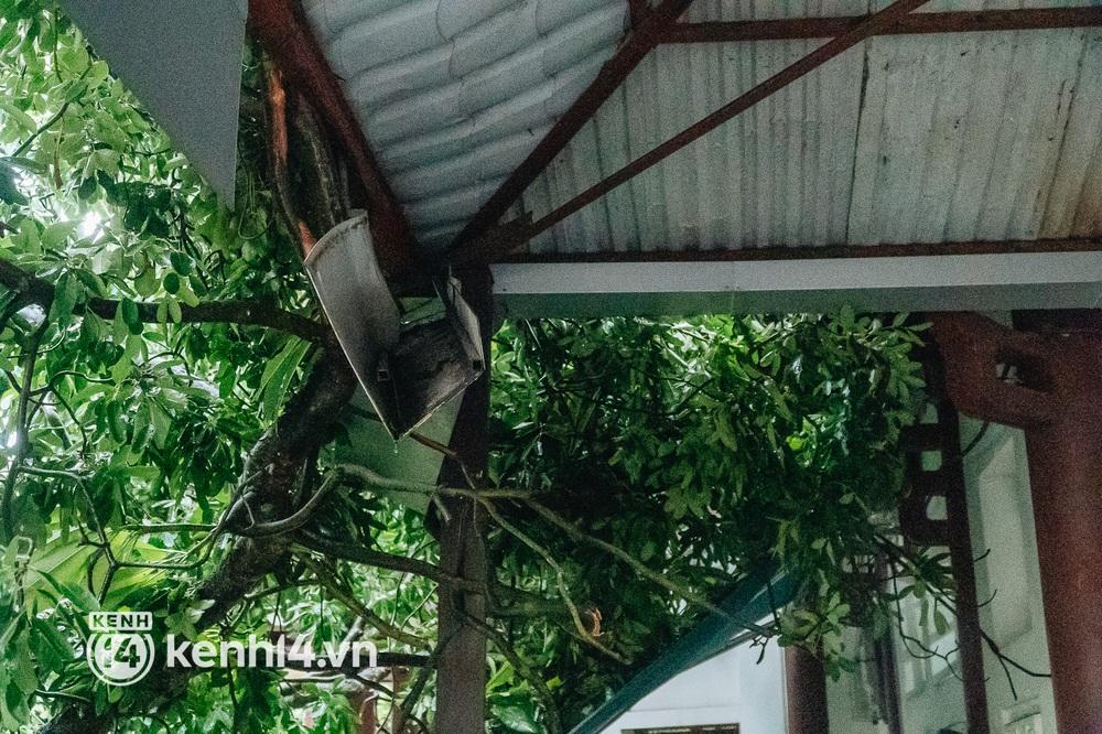 Hà Nội: Bão số 7 gây mưa lớn cả ngày, nhiều cây xanh bật gốc, đè bẹp xế hộp Camry - Ảnh 5.