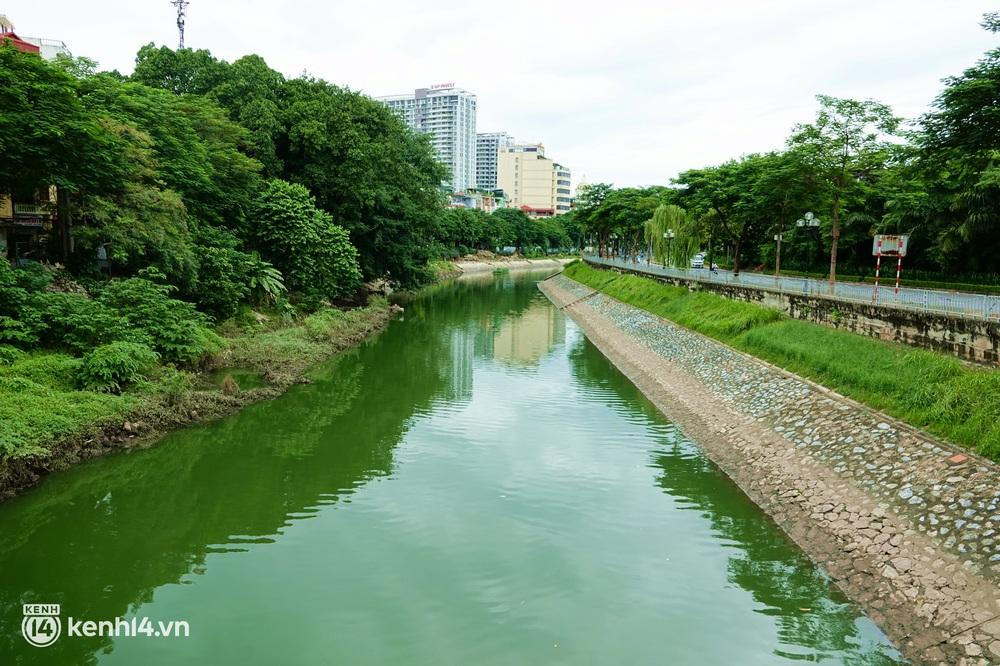 Hà Nội: Sông Tô Lịch bất ngờ chuyển màu xanh ngắt, người dân mang theo bao bắt hàng trăm cân cá đem về - Ảnh 2.