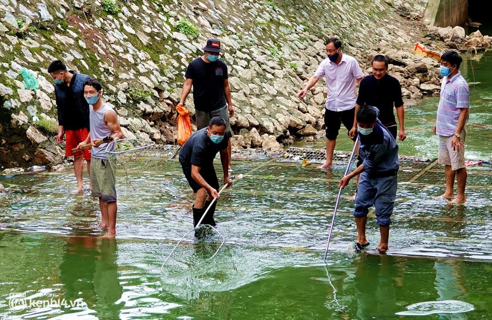 Hà Nội: Sông Tô Lịch bất ngờ chuyển màu xanh ngắt, người dân mang theo bao bắt hàng trăm cân cá đem về - Ảnh 7.