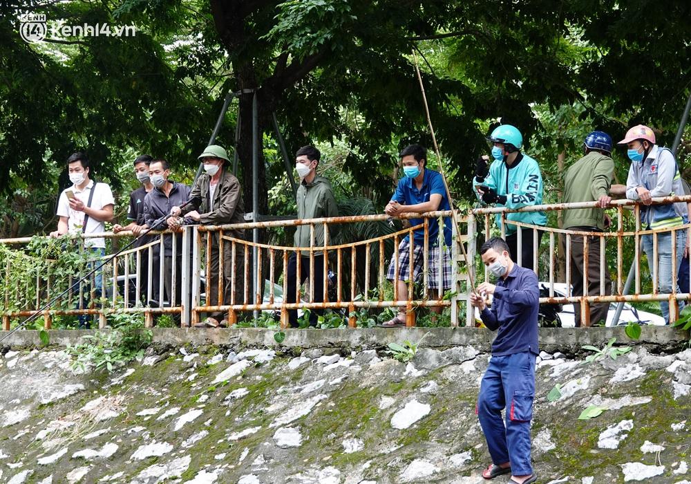 Hà Nội: Sông Tô Lịch bất ngờ chuyển màu xanh ngắt, người dân mang theo bao bắt hàng trăm cân cá đem về - Ảnh 12.