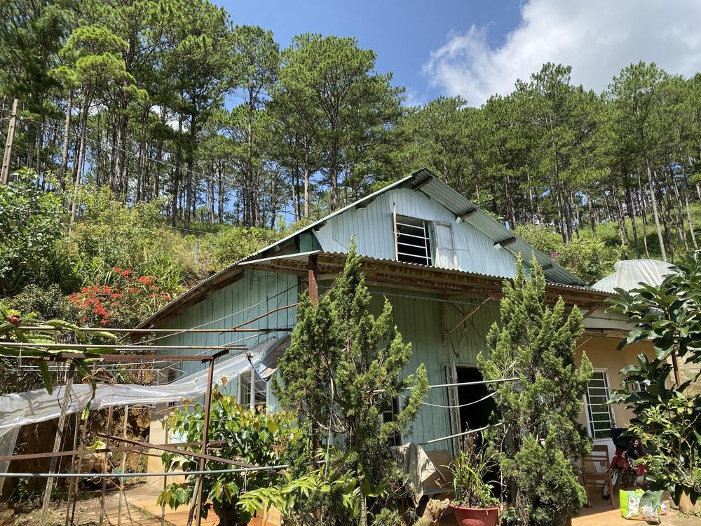 Chàng trai 9x từ cuộc sống định cư tại Canada trở về dừng chân ở Đà Lạt, chi 300 triệu tự tay vun đắp căn nhà gỗ cực thơ   - Ảnh 2.