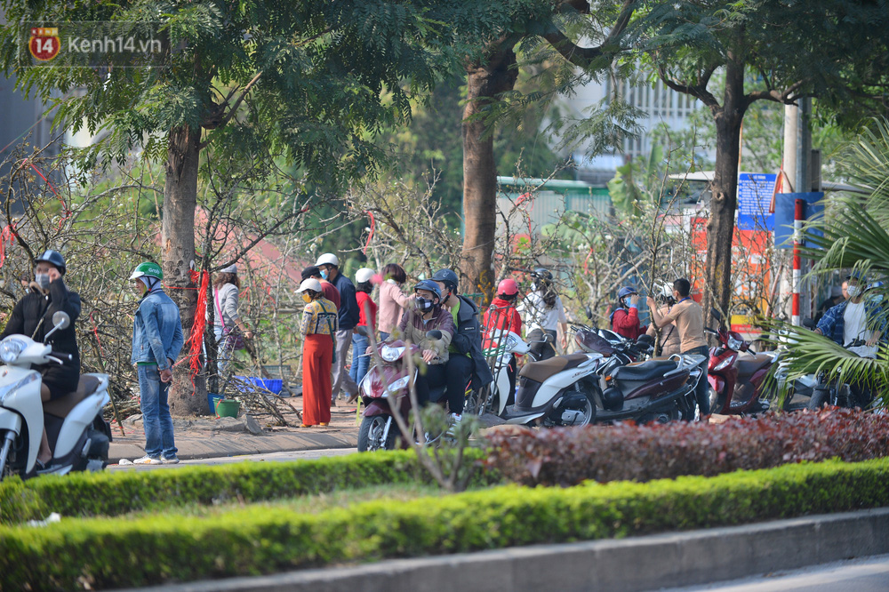 Ảnh: Hàng trăm người dân Hà Nội đổ xô đi mua hoa lê về chơi Rằm tháng Giêng - Ảnh 3.