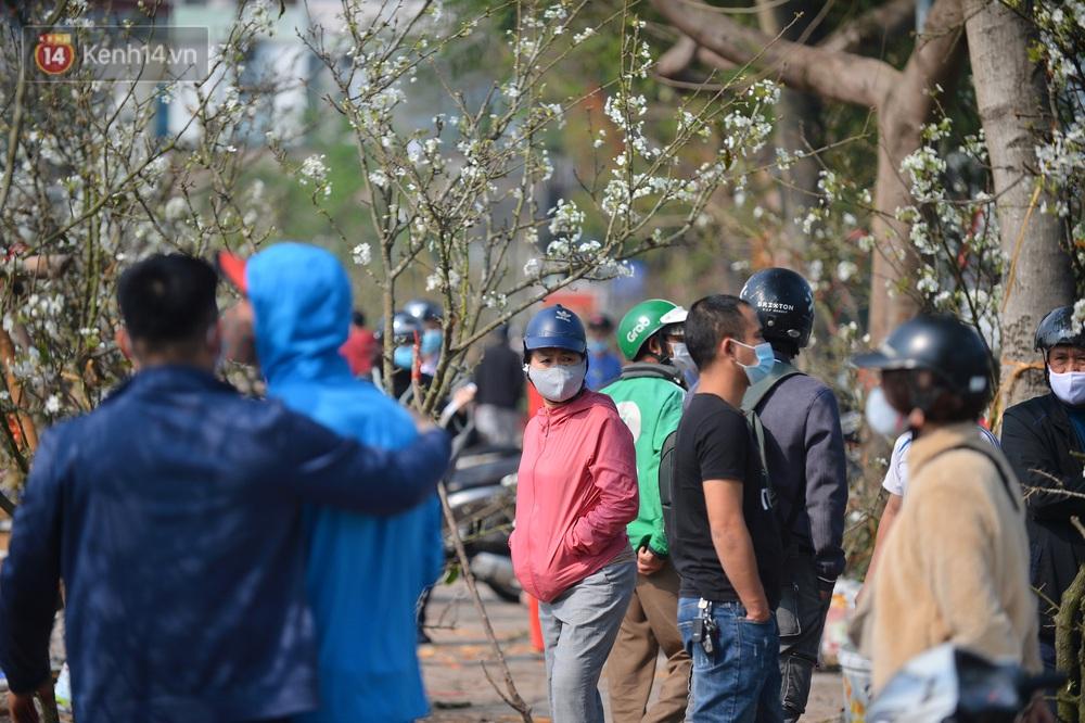 Ảnh: Hàng trăm người dân Hà Nội đổ xô đi mua hoa lê về chơi Rằm tháng Giêng - Ảnh 6.