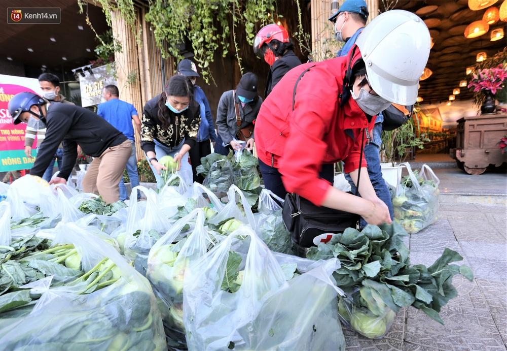 Ảnh: Người Đà Nẵng nườm nượp kéo nhau giải cứu nông sản cho nông dân Hải Dương - Ảnh 9.