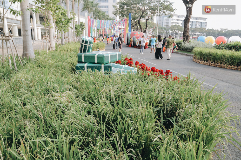 Cận cảnh đường hoa Tết Tân Sửu 2021 phong cách tối giản tại phố nhà giàu Sài Gòn - Ảnh 14.