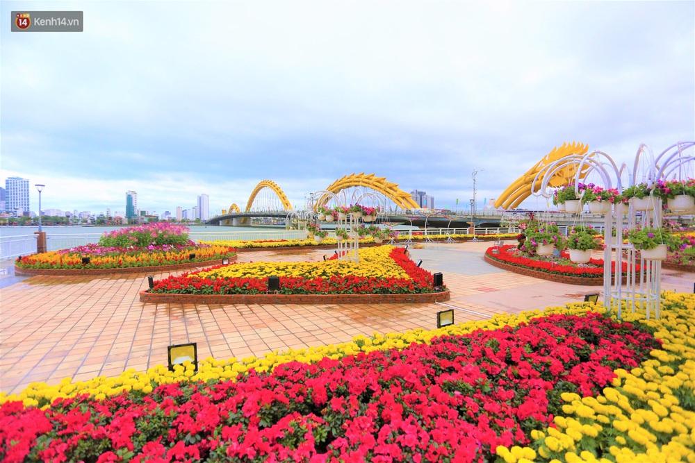 Người Đà Nẵng hào hứng check in đường hoa Xuân hơn 10 tỷ đồng dọc bờ sông Hàn - Ảnh 1.