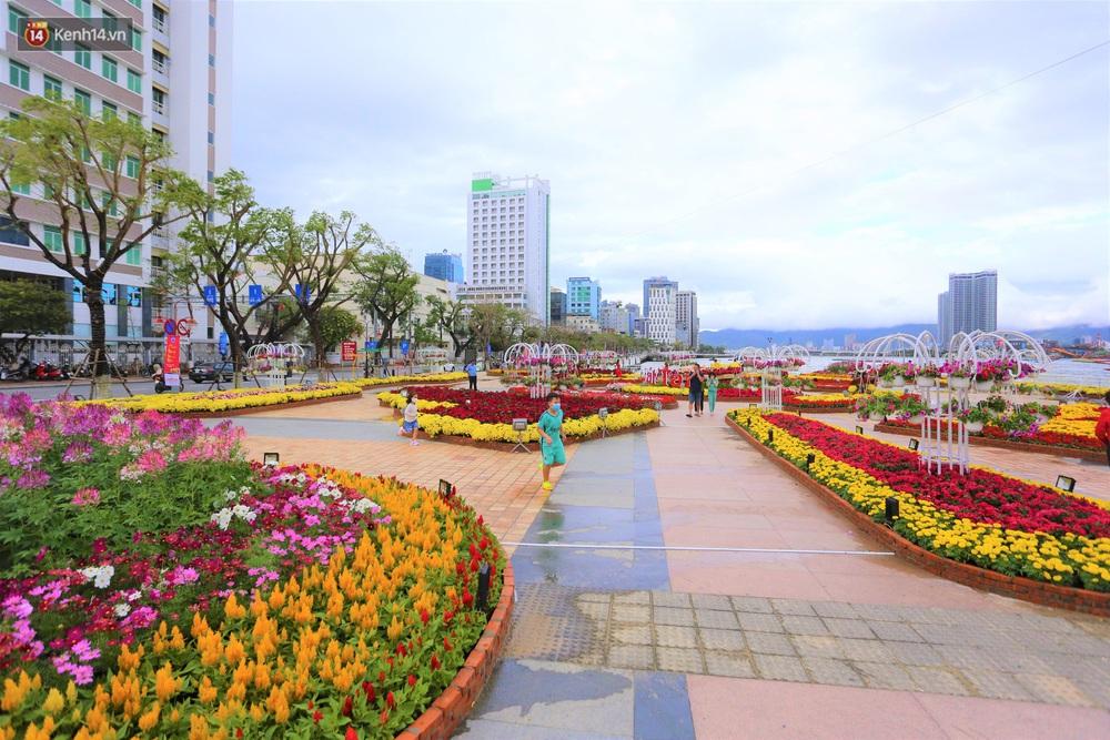 Người Đà Nẵng hào hứng check in đường hoa Xuân hơn 10 tỷ đồng dọc bờ sông Hàn - Ảnh 2.