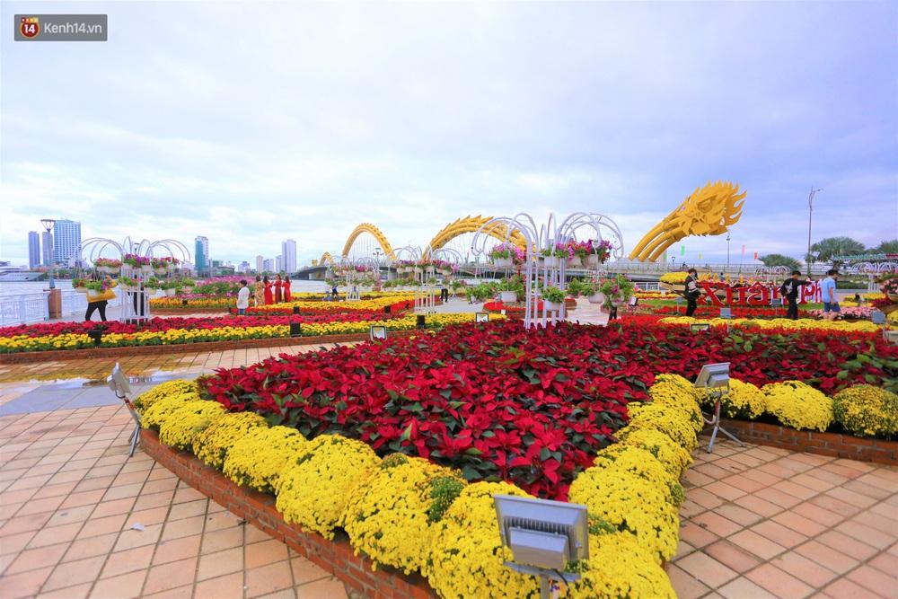 Người Đà Nẵng hào hứng check in đường hoa Xuân hơn 10 tỷ đồng dọc bờ sông Hàn - Ảnh 12.