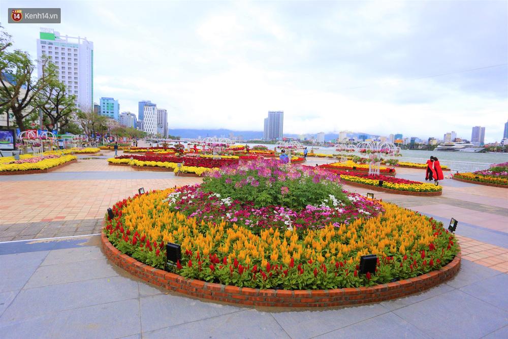 Người Đà Nẵng hào hứng check in đường hoa Xuân hơn 10 tỷ đồng dọc bờ sông Hàn - Ảnh 7.