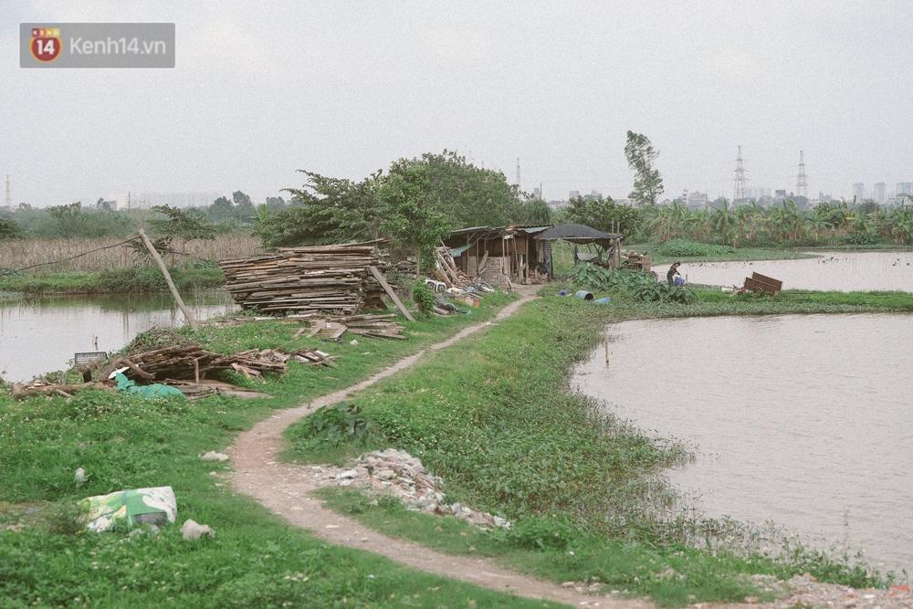 """Người mẹ sinh 14 đứa con ở Hà Nội, 3 đứa vướng vào lao lý: """"Cuộc đời này tôi chưa thấy ai khổ như mình"""" - Ảnh 2."""