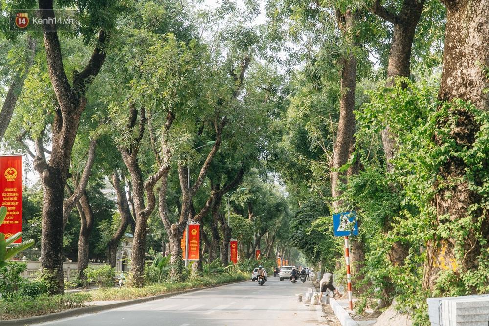 Những tuyến phố có hàng cây xanh được quy hoạch 100 năm trước ở Hà Nội giờ ra sao? - Ảnh 11.