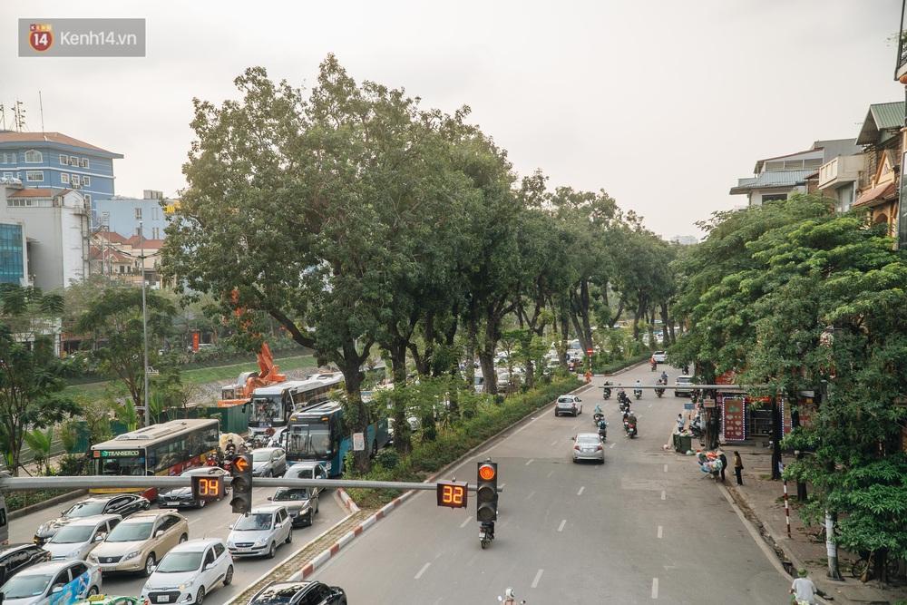 Những tuyến phố có hàng cây xanh được quy hoạch 100 năm trước ở Hà Nội giờ ra sao? - Ảnh 13.