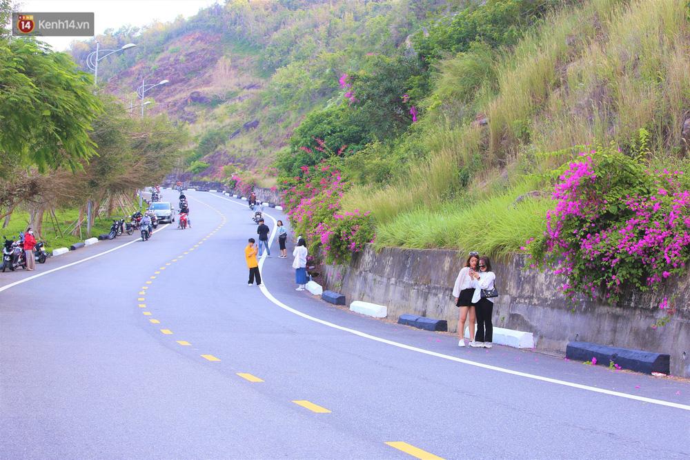 """""""Con đường hoa giấy"""" ở Đà Nẵng có gì hot mà giới trẻ rần rần kéo đến check-in? - Ảnh 1."""