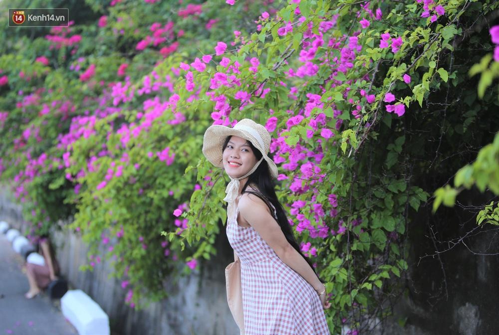 """""""Con đường hoa giấy"""" ở Đà Nẵng có gì hot mà giới trẻ rần rần kéo đến check-in? - Ảnh 4."""