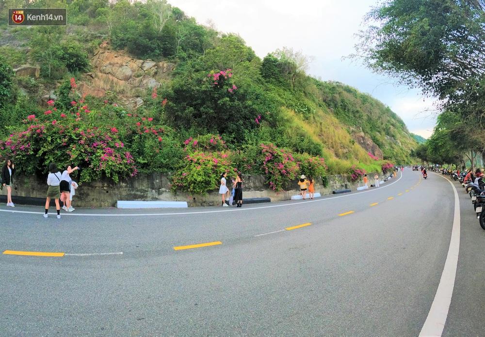 """""""Con đường hoa giấy"""" ở Đà Nẵng có gì hot mà giới trẻ rần rần kéo đến check-in? - Ảnh 6."""