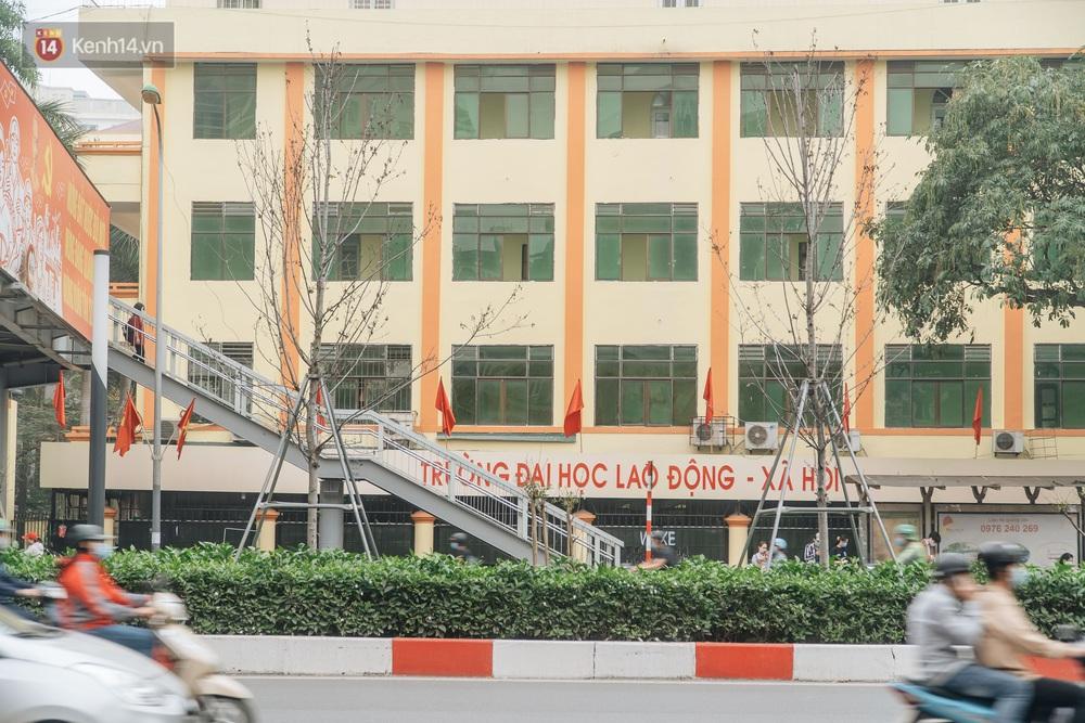 Hàng phong lá đỏ ở Hà Nội: Từ kỳ vọng Châu Âu giữa lòng Thủ đô đến những cành củi khô sắp bị thay thế - Ảnh 8.