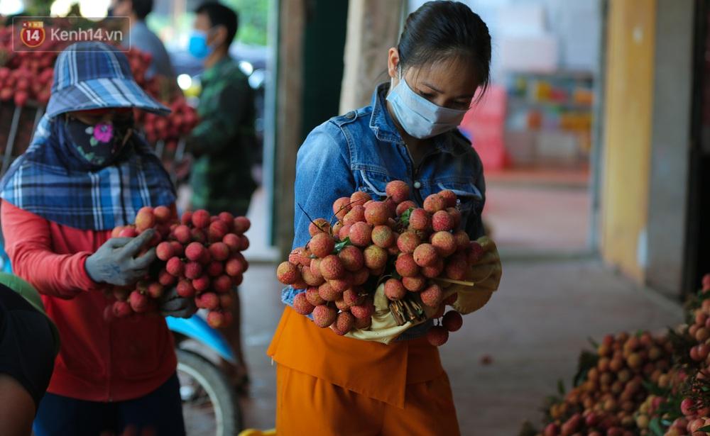 Ảnh: Người dân Bắc Giang thắp đèn từ 2 giờ sáng, đi thu hoạch vải thiều xuyên đêm - Ảnh 13.