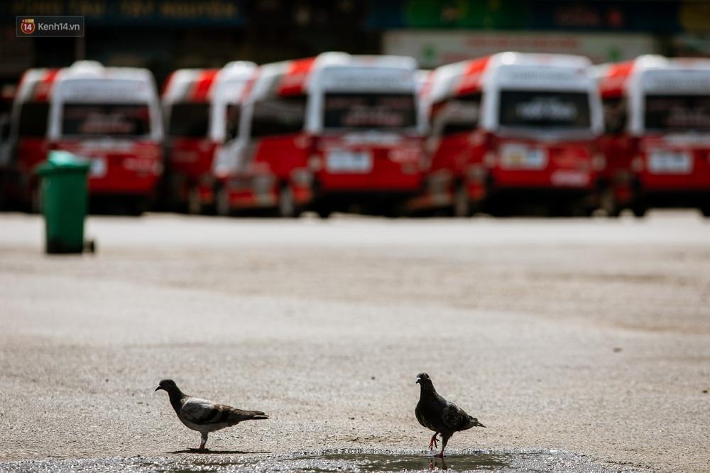 Nỗi buồn của tài xế Sài Gòn những ngày thực hiện Chỉ thị 10: Taxi mất việc, xe ôm mòn mỏi chờ khách - Ảnh 1.