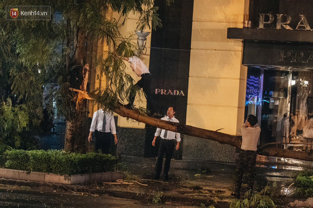 Chùm ảnh Hà Nội sau cơn mưa trắng trời: Cây đổ khắp phố phường, mất điện, người dân không kịp trở tay - Ảnh 14.