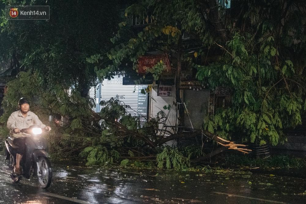 Chùm ảnh Hà Nội sau cơn mưa trắng trời: Cây đổ khắp phố phường, mất điện, người dân không kịp trở tay - Ảnh 12.