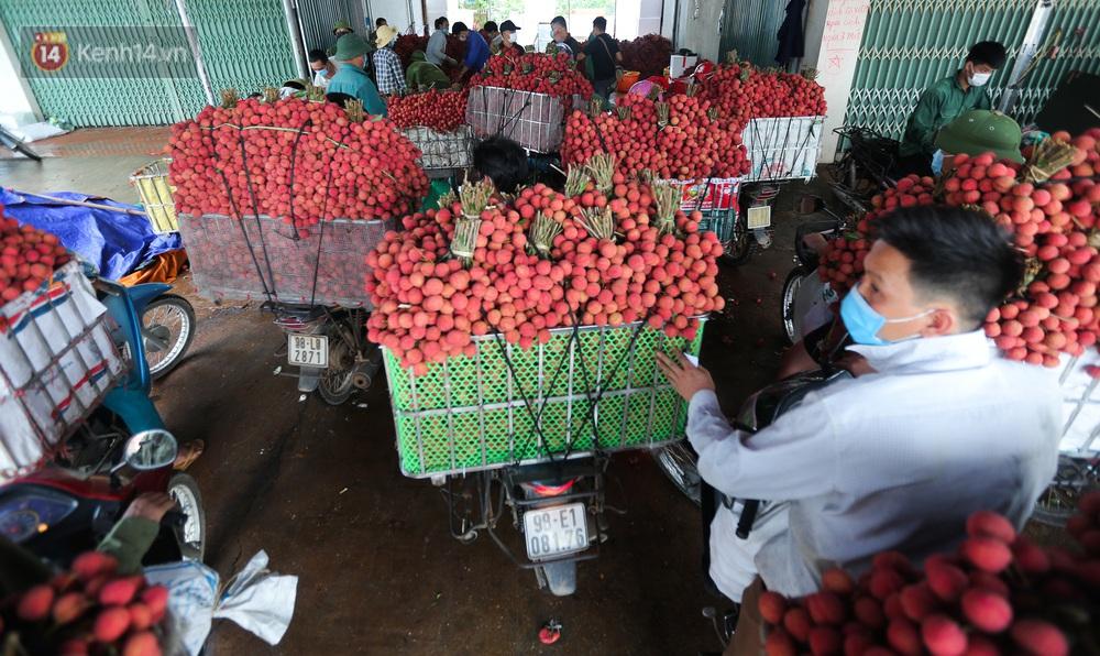Ảnh: Nông dân Bắc Giang nối đuôi nhau chở vải thiều ra chợ, đường quê đỏ rực một màu - Ảnh 14.