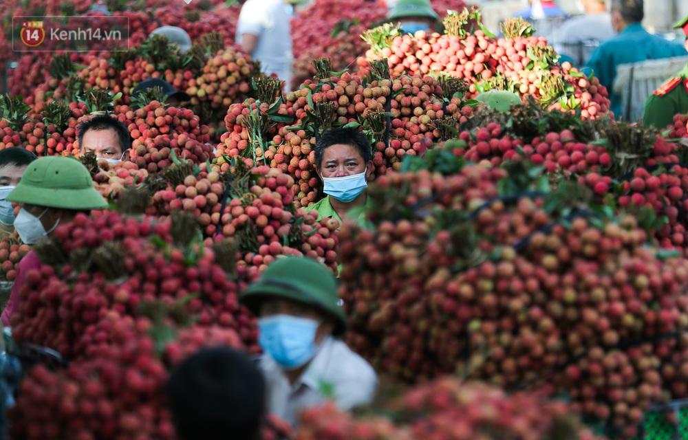 Ảnh: Nông dân Bắc Giang nối đuôi nhau chở vải thiều ra chợ, đường quê đỏ rực một màu - Ảnh 11.
