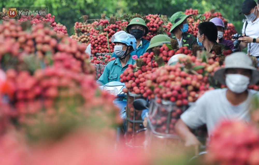 Ảnh: Nông dân Bắc Giang nối đuôi nhau chở vải thiều ra chợ, đường quê đỏ rực một màu - Ảnh 7.