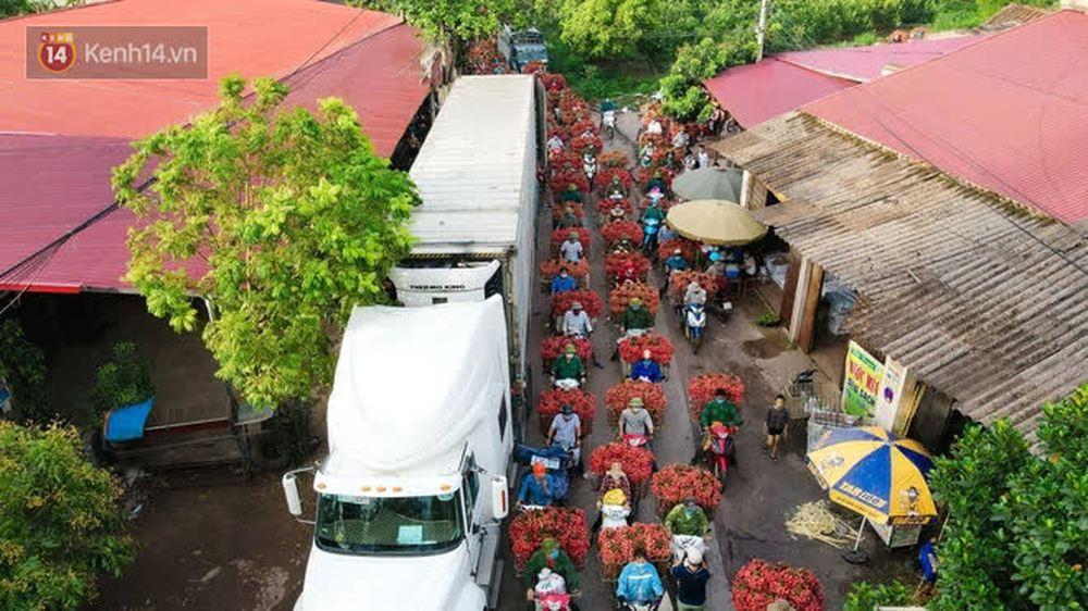 Ảnh: Nông dân Bắc Giang nối đuôi nhau chở vải thiều ra chợ, đường quê đỏ rực một màu - Ảnh 4.