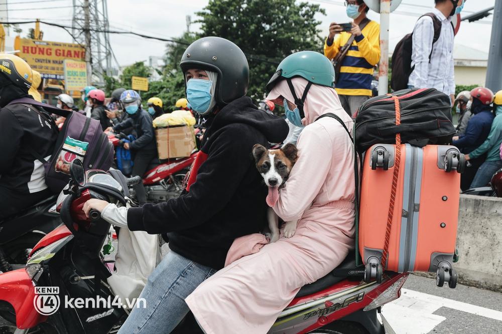 Ảnh: Hàng nghìn người ùn ùn rời TP.HCM về quê bằng xe máy, xót xa cảnh những đứa trẻ vật vờ ngủ gật trong lòng cha mẹ - Ảnh 11.