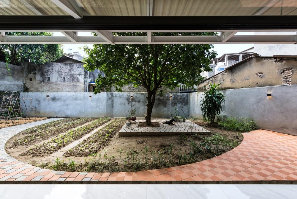 Cặp vợ chồng 9x bỏ Hà Nội về Thái Nguyên tậu cơ ngơi hoành tráng, tận hưởng cuộc sống yên bình với khu vườn trên cao cực chất - Ảnh 3.