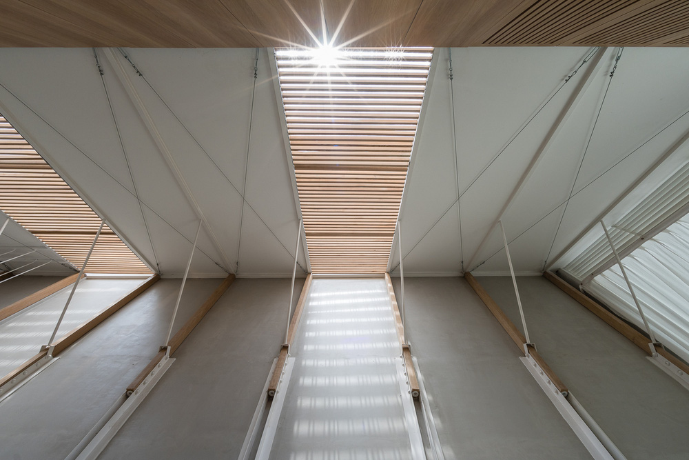 Gia đình phi công thiết kế nhà như cabin máy bay với chiều dài gấp 10 lần chiều rộng, càng bước vào sâu càng thấy ồ wow - Ảnh 12.