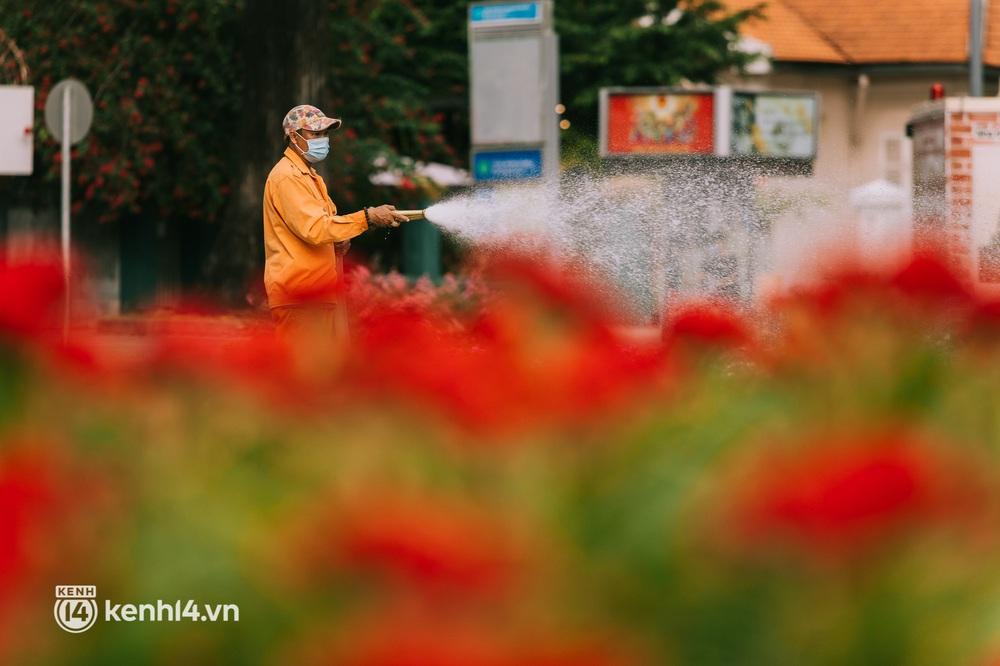 Ngày Quốc khánh đặc biệt: Cả Hà Nội, Sài Gòn và Đà Nẵng đều lặng yên, đồng lòng chiến thắng đại dịch - Ảnh 26.