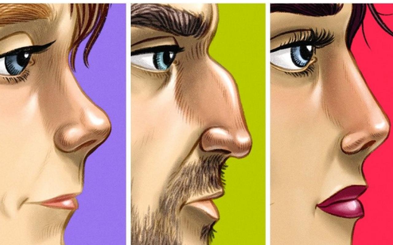 Quiz: Hãy để tướng mũi tiết lộ nét tính cách đặc trưng nhất sâu thẳm bên trong bạn