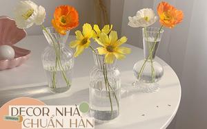 8 bình thủy tinh xinh xắn dành cho hội ghiền decor nhà kiểu Hàn giá chỉ từ 45K